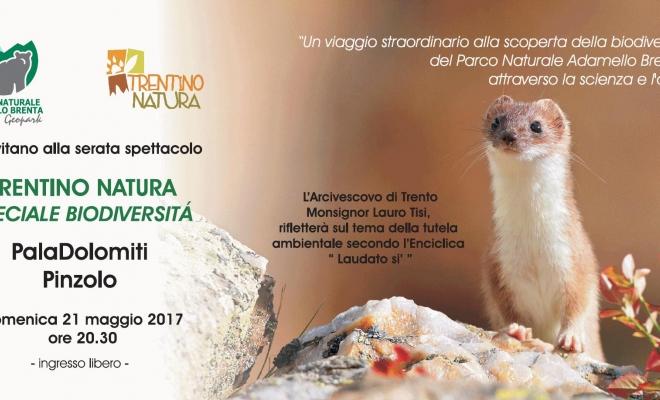 TRENTINO NATURA. Speciale Biodiversità. Il Parco Adamello Brenta presenta lo spettacolo domenica 21 maggio alle 20.30 al PalaDolomiti di Pinzolo