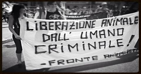 liberazione animale dallumano criminale