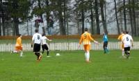 Calcio  (14)