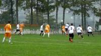 Calcio  (9)