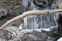 1 forme di ghiaccio - Giorgio Berasi - image