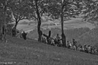 Croce monte Guarda  1 - Giorgio Berasi - Image